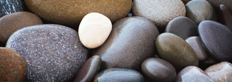Web banner abstract smooth round wet pebbles sea texture background.  Royalty Free Stock Image