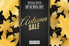 Web banner for Autumn sale. Advertising seasonal banner. Invitation greeting card. Calligraphy and lettering. Golden maple leaves. Dark label with text. Vector stock illustration