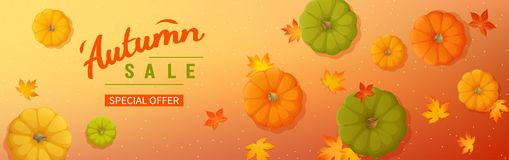 Web banner for Autumn sale. Horizontal banner flyer with pumpkins, maple leaves on a colored background. Special seasonal offer. Top view. Vector illustration royalty free illustration