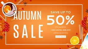 Web banner for autumn sale Royalty Free Stock Photo