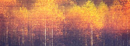 Web banner autumnal textural scenic background with motion blur, toned in vintage style.  Royalty Free Stock Image