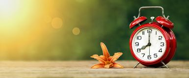 Web banner of daylight savings concept. Daylight savings, spring forward concept - web banner of a red alarm clock and flower stock photo