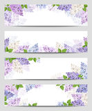Web banners with lilac flowers. Vector eps-10. Royalty Free Stock Photography