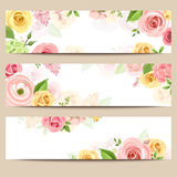 Web banners with pink, orange and yellow flowers. Vector eps-10. Set of three vector web banners with pink, orange and yellow roses and lisianthus flowers Stock Image