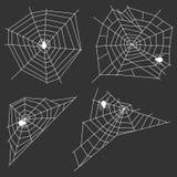 Web blanc avec une araignée sur un fond noir Une araignée tisse une toile d'araignée Photo libre de droits