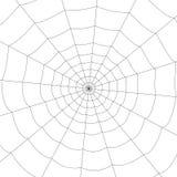 Web blanco concéntrico en un fondo blanco Imagenes de archivo