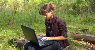 Web browsing in forest Royalty Free Stock Images