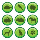 Web buttons pets paw print Stock Image