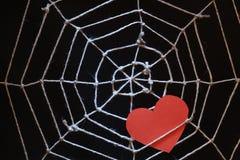 Web d'amour Photographie stock