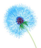 Web Dandelion. Dandelion made out of arrows pointing at internet addresses Stock Images