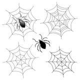 Web de araña libre illustration