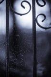 Web de aranha assustador Imagens de Stock Royalty Free