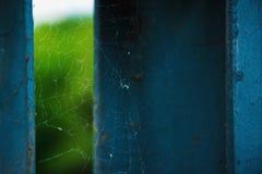 Web de aranha bonita nos pilars do ferro Imagem de Stock Royalty Free