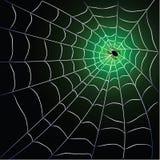 Web de aranha com aranha ilustração stock