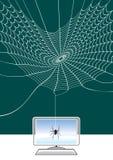 Web de aranha e connetion Fotografia de Stock Royalty Free