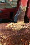 Web de aranha em uma porta de carro abandonada Fotografia de Stock