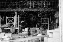 Web de aranha que olha através de uma janela quebrada imagens de stock royalty free