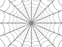 Web de aranhas ilustração do vetor