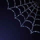 Web de vecteur d'araignée d'illustration Photographie stock