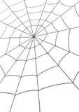 Web del ragno Fotografia Stock Libera da Diritti