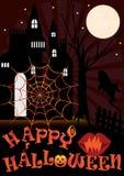 Web del ragno variopinto Fotografie Stock Libere da Diritti