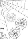 Web del vector Fotografía de archivo