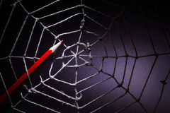 Web Design. Concept. Red pencil in rope web on dark background stock images