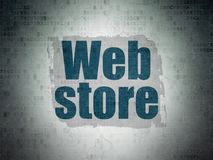 Web design concept: Web Store on Digital Data Paper background Stock Photography