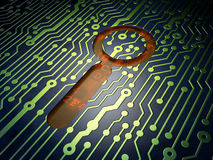 Web development concept: Search on circuit board Royalty Free Stock Photography