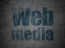 Web development concept: Web Media on grunge wall background stock illustration