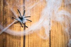 Web dos símbolos de Dia das Bruxas e aranhas pretas Foto de Stock