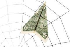 Web e dólar de aranha Imagem de Stock Royalty Free