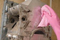 Web e poeira em um geyser. imagens de stock