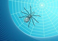 Web e vetor da aranha Foto de Stock Royalty Free