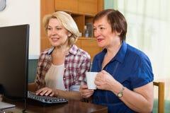 Web femelle plus âgé de la lecture rapide deux Images stock
