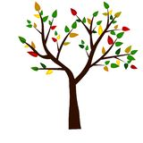 web Forme d'arbre, de racines et de feuilles vertes Illustration de vecteur illustration libre de droits