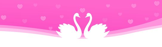 Web Header swan couple in love. Cute swan couple in love on pink / purple falling hearts romantic background Website header / banner Royalty Free Stock Images