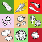 Web icon set of different vegetables Stock Photography
