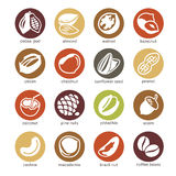 Web icon set - nuts and seed Royalty Free Stock Image