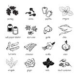 Web icon set - spices, condiments and herbs royalty free illustration