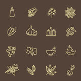 Web icon set - spices, condiments and herbs Royalty Free Stock Photo