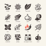 Web icon set - spices, condiments and herbs. Vector icons collection - spices, condiments and herbs Stock Images