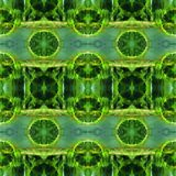 Web inconsútil tribal moderno verde del modelo de Ikat Foto de archivo