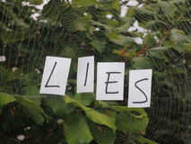 Web of lies royalty free stock photos