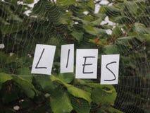 Web of lies Royalty Free Stock Photos