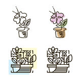 Web line icon. Flower in a pot. Line art icon. Royalty Free Stock Images