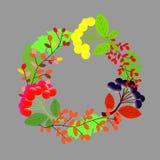 web Mooi rond kader met wildflowers Vlakke stijl Vector royalty-vrije illustratie