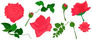 web Realistisches Rosen-Vektor-Klipp-Art Pink Flower-Bild vektor abbildung