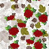 Arrowwood seamless pattern. Red arrowwood on white background with green, brown and colorless  leaves Royalty Free Stock Photography