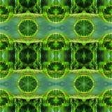 Web senza cuciture tribale moderno verde del modello di Ikat Fotografia Stock